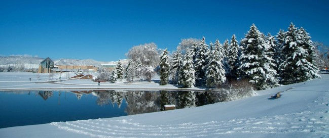 Snow at Colorado State University